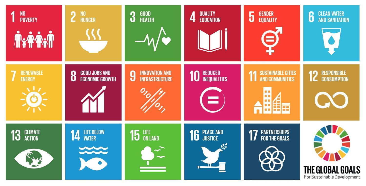 17 UN development goals
